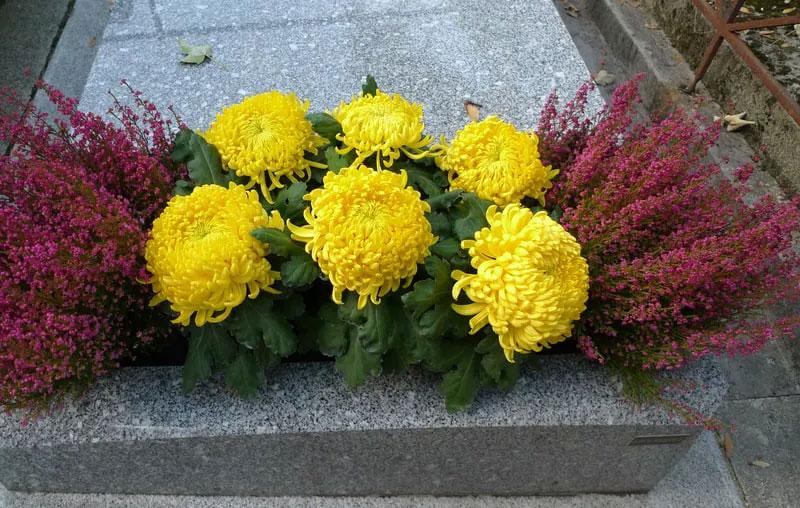 fleurs-sur-sepulture